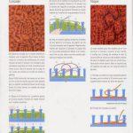Tricotin geant livre