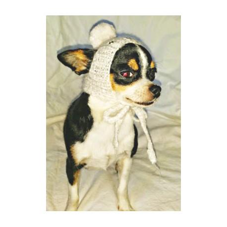 Tricoter un bonnet pour chihuahua
