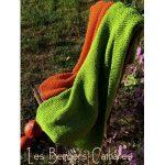 Kit tricot débutant couverture
