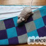 Tricoter un plaid naissance