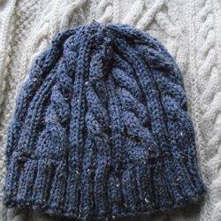 Modele tricot bonnet homme bergere de france