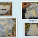 Torsade tricot aiguille circulaire