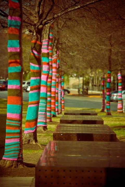 Arbre avec tricot