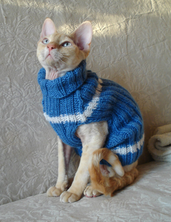 Tricot animaux chat